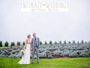 intimate-weddings-feature