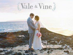 vale-vine-feature