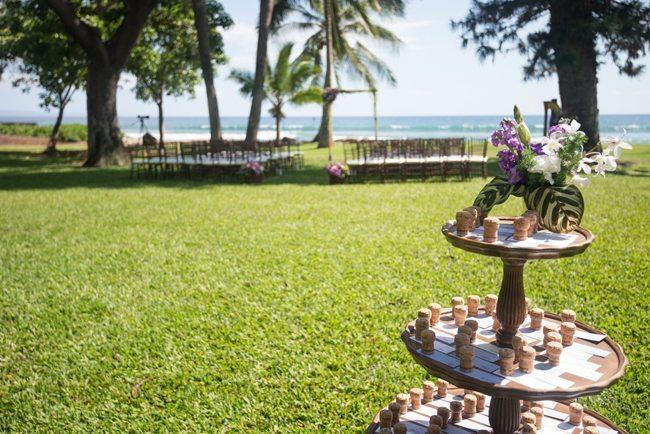 olowalu-maui-wedding-000